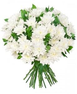 buchet_crizanteme_pastel_flowers